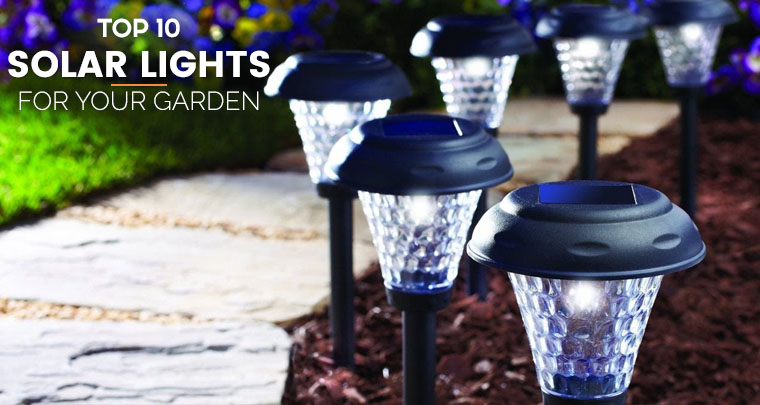 Brightest Solar Landscape Lights Reviews