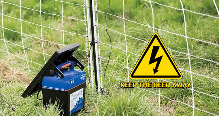 Solar Fence Charger for Deer Reviews
